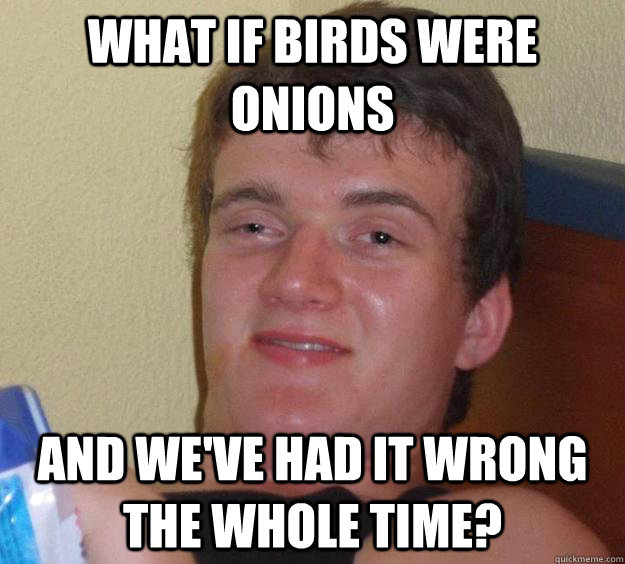 What if birds were onions and we've had it wrong the whole time? - What if birds were onions and we've had it wrong the whole time?  10 Guy