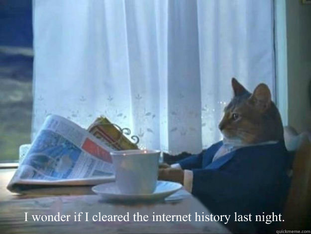 I wonder if I cleared the internet history last night.