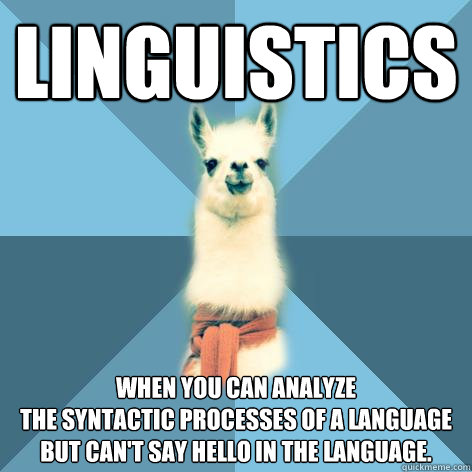 Linguistics When you can analyze the syntactic processes of a language but can't say hello in the language.  Linguist Llama