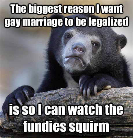 The biggest reason I want gay marriage to be legalized is so I can watch the fundies squirm  - The biggest reason I want gay marriage to be legalized is so I can watch the fundies squirm   Confession Bear