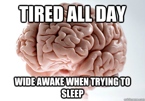 TIRED ALL DAY WIDE AWAKE WHEN TRYING TO SLEEP  - TIRED ALL DAY WIDE AWAKE WHEN TRYING TO SLEEP   Scumbag Brain