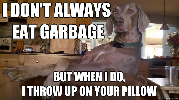 i don't always  eat garbage but when i do,  I throw up on your pillow