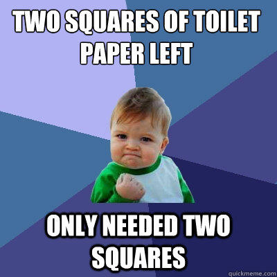 two squares of toilet paper left only needed two squares - two squares of toilet paper left only needed two squares  Success Kid