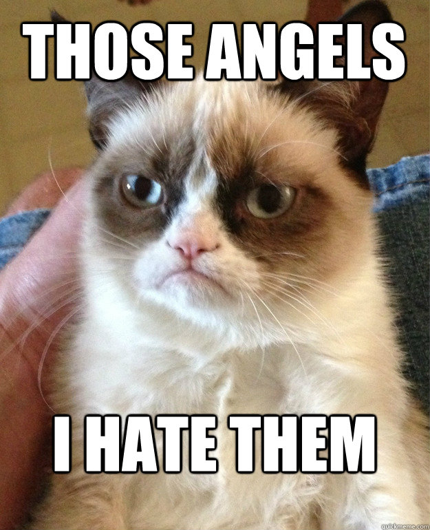 Those angels I hate them - Those angels I hate them  Grumpy Cat