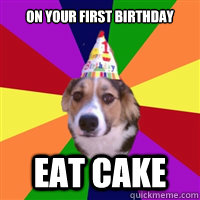 On your first birthday EAT CAKE  birthday dog