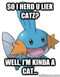 So i herd u liek catz? Well, I'm kinda a cat...