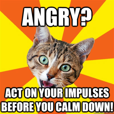 Angry? Act on your impulses before you calm down! - Angry? Act on your impulses before you calm down!  Bad Advice Cat