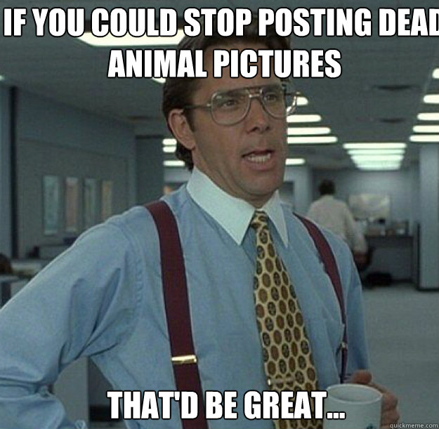 If you could stop posting dead animal pictures THAT'D BE GREAT... - If you could stop posting dead animal pictures THAT'D BE GREAT...  thatd be great