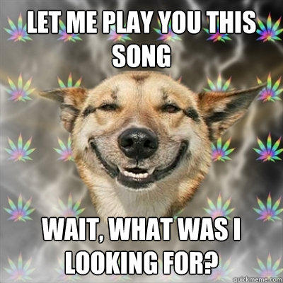 LET ME PLAY YOU THIS SONG WAIT, WHAT WAS I LOOKING FOR?  Stoner Dog