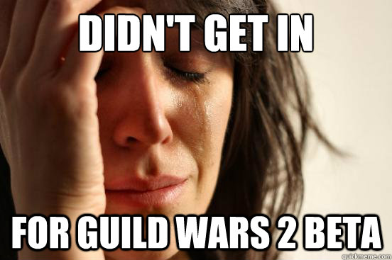 Didn't Get In For Guild wars 2 Beta - Didn't Get In For Guild wars 2 Beta  First World Problems