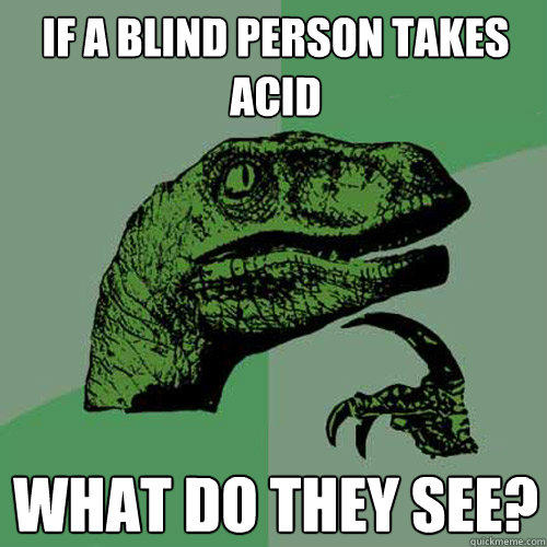 If a blind person takes acid What do they see? - If a blind person takes acid What do they see?  Philosoraptor