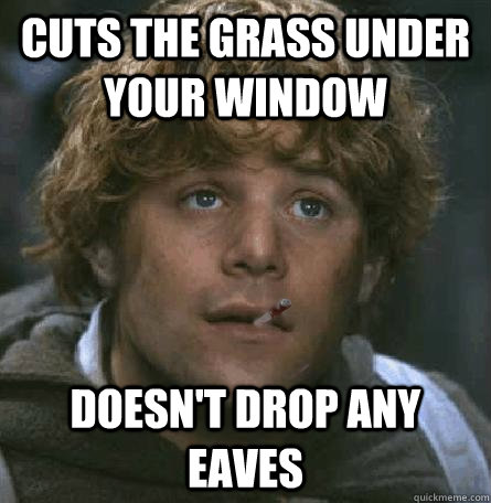 cuts the grass under your window doesn't drop any eaves