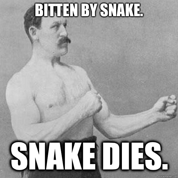 Bitten by snake. Snake dies. - Bitten by snake. Snake dies.  overly manly man