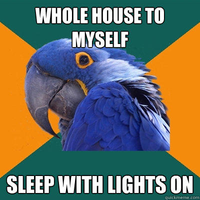 whole house to myself sleep with lights on - whole house to myself sleep with lights on  Paranoid Parrot