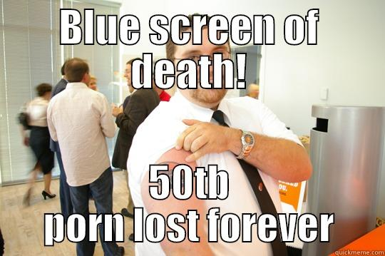 BLUE SCREEN OF DEATH! 50TB PORN LOST FOREVER GeekSquad Gus