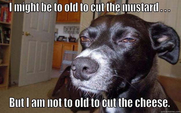 I MIGHT BE TO OLD TO CUT THE MUSTARD . . . BUT I AM NOT TO OLD TO CUT THE CHEESE. Skeptical Mutt