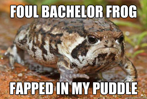 foul bachelor frog fapped in my puddle - foul bachelor frog fapped in my puddle  Misc