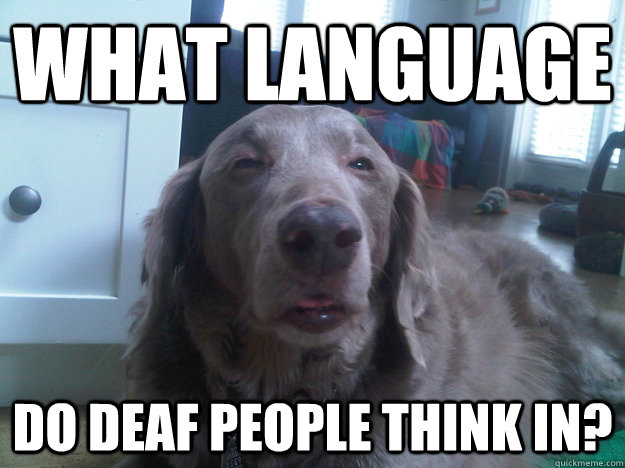 what language do deaf people think in? - what language do deaf people think in?  10 Dog
