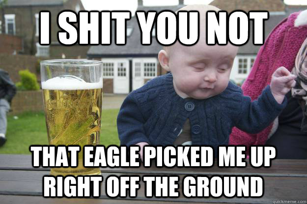 I shit you not  That eagle picked me up right off the ground - I shit you not  That eagle picked me up right off the ground  drunk baby