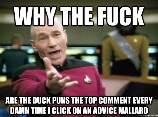 why the fuck Are the duck puns the top comment every damn time I click on an Advice Mallard - why the fuck Are the duck puns the top comment every damn time I click on an Advice Mallard  Annoyed Picard HD