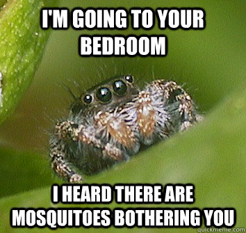 i'm going to your bedroom i heard there are mosquitoes bothering you - i'm going to your bedroom i heard there are mosquitoes bothering you  Misunderstood Spider