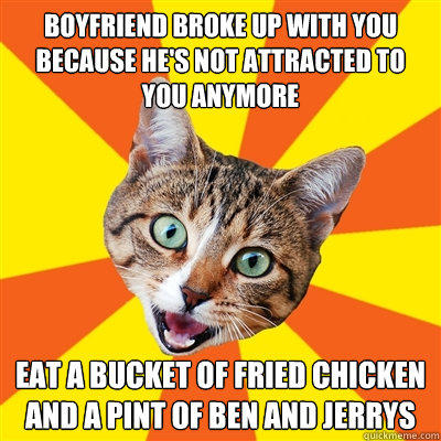 Boyfriend broke up with you because he's not attracted to you anymore eat a bucket of fried chicken and a pint of Ben and Jerrys  Bad Advice Cat