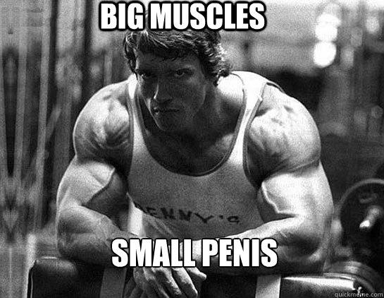 Big muscles small penis - Big muscles small penis  Serious Schwarzenegger