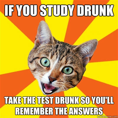 If you study drunk take the test drunk so you'll remember the answers - If you study drunk take the test drunk so you'll remember the answers  Bad Advice Cat