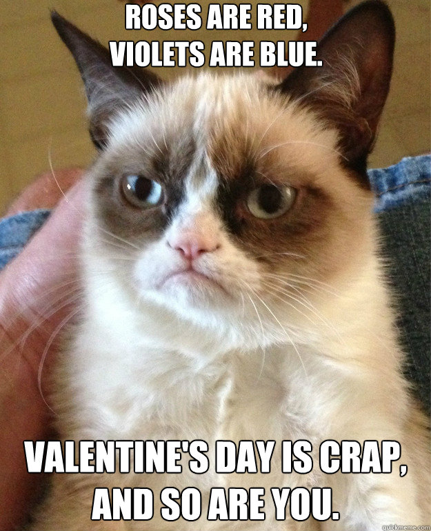 Roses are red, Violets are blue. Valentine's Day is crap, and so are you. - Roses are red, Violets are blue. Valentine's Day is crap, and so are you.  Misc