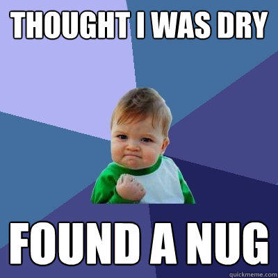 Thought I was dry found a nug - Thought I was dry found a nug  Success Kid