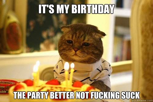 It's My Birthday The party better not fucking suck - It's My Birthday The party better not fucking suck  Dissapointed Birthday Cat