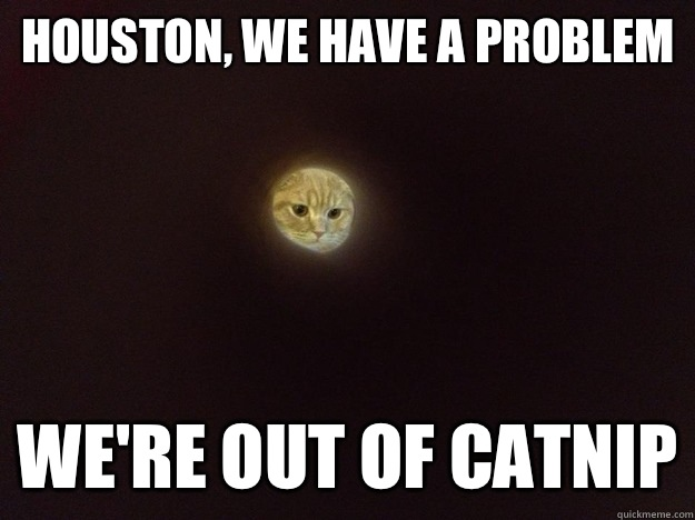 Houston, we have a problem  We're out of catnip
