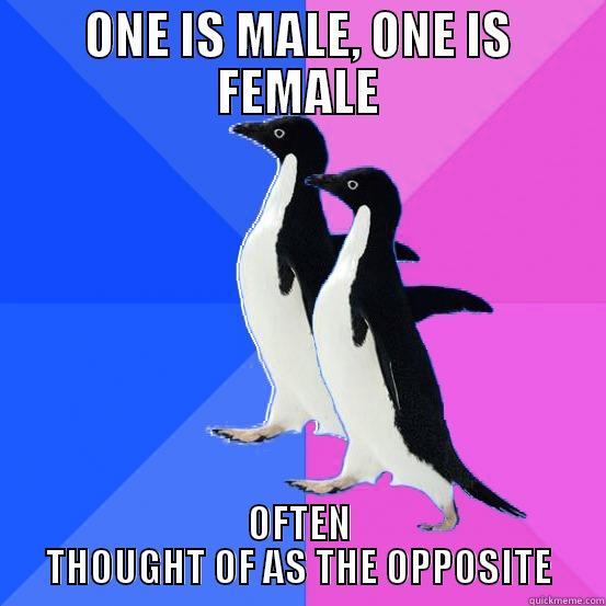 ONE IS MALE, ONE IS FEMALE OFTEN THOUGHT OF AS THE OPPOSITE Socially Awkward Couple