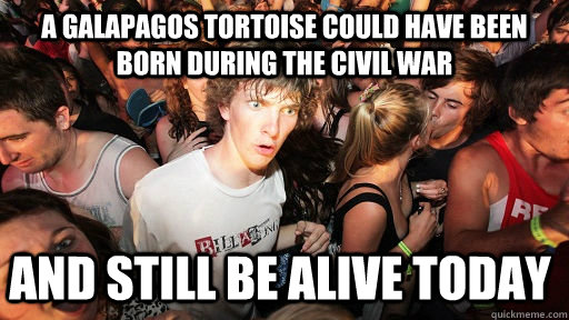 A Galapagos Tortoise could have been born during the civil war and still be alive today - A Galapagos Tortoise could have been born during the civil war and still be alive today  Sudden Clarity Clarence