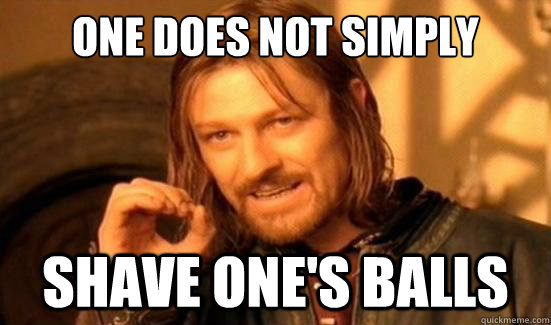 One Does Not Simply Shave one's balls - One Does Not Simply Shave one's balls  Boromir