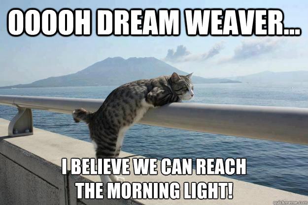 Ooooh dream weaver... I believe we can reach the morning light! - Ooooh dream weaver... I believe we can reach the morning light!  daydreamer cat