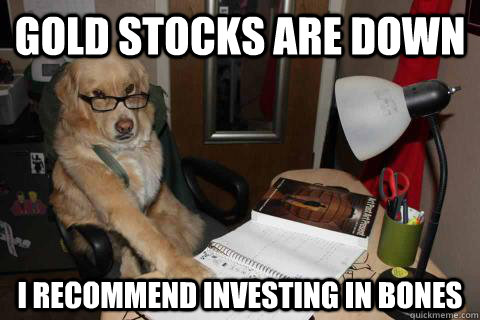 Gold stocks are down I recommend investing in bones - Gold stocks are down I recommend investing in bones  Financial Advice Dog