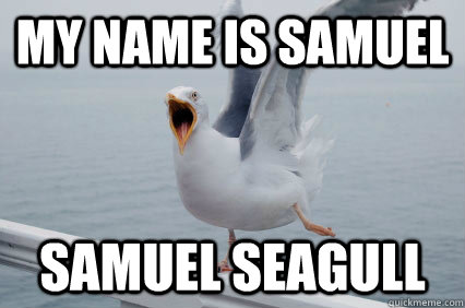 My name is samuel samuel seagull
