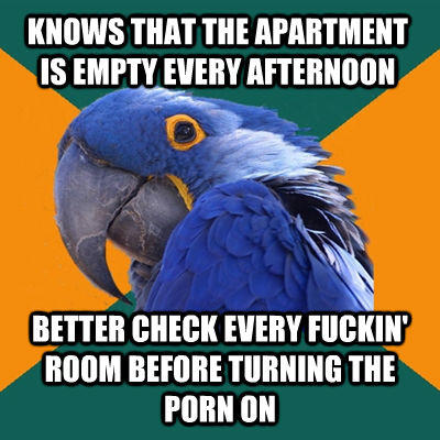 KNOWS THAT THE APARTMENT IS EMPTY EVERY AFTERNOON BETTER CHECK EVERY FUCKIN' ROOM BEFORE TURNING THE PORN ON - KNOWS THAT THE APARTMENT IS EMPTY EVERY AFTERNOON BETTER CHECK EVERY FUCKIN' ROOM BEFORE TURNING THE PORN ON  Paranoid Parrot