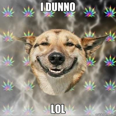 I DUNNO LOL - I DUNNO LOL  Stoner Dog