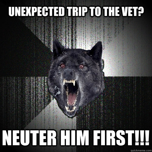 Unexpected trip to the Vet? NEUTER HIM FIRST!!! - Unexpected trip to the Vet? NEUTER HIM FIRST!!!  Insanity Wolf