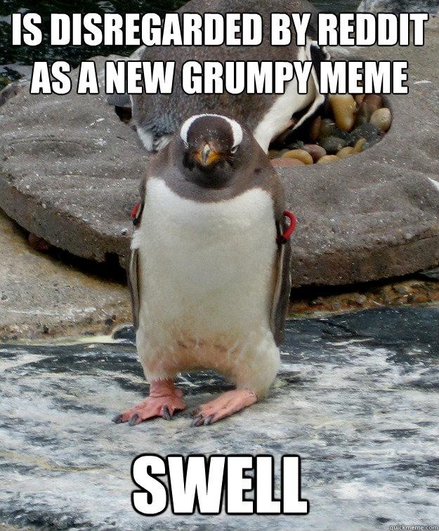 Is disregarded by Reddit as a new grumpy meme Swell  Grumpy penguin