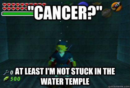 7c33360509e053a098c181ce38ad7e2c55c61aa8acd01e7a3947f7feb61f7149 water temple memes quickmeme,Water Temple Meme