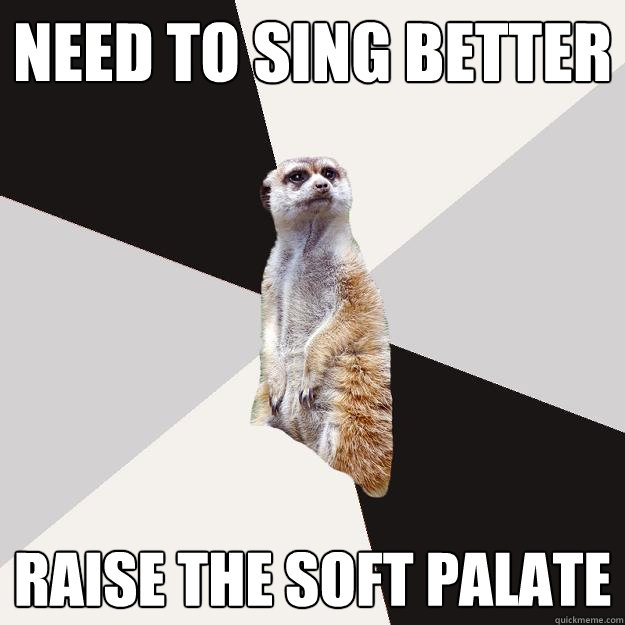 need to sing better raise the soft palate