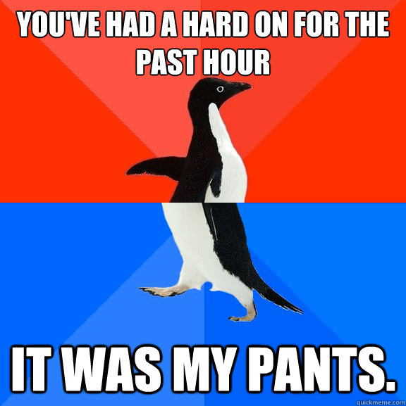 You've had a hard on for the past hour It was my pants. - You've had a hard on for the past hour It was my pants.  Socially Awesome Awkward Penguin