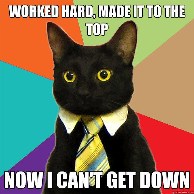 worked hard, made it to the top now I can't get down - worked hard, made it to the top now I can't get down  Business Cat