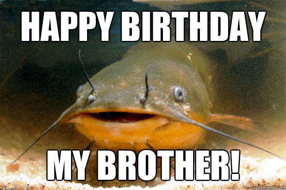 happy birthday my brother! - happy birthday my brother!  Misc