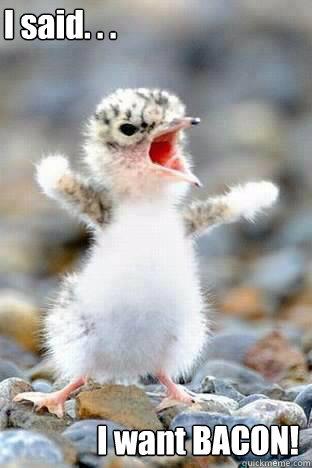 I said. . . I want BACON!
