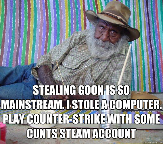 Stealing goon is so mainstream. I stole a computer.  play counter-strike with some cunts steam account