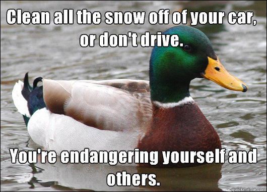 Clean all the snow off of your car, or don't drive. You're endangering yourself and others. - Clean all the snow off of your car, or don't drive. You're endangering yourself and others.  Actual Advice Mallard